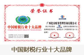 中国财税行业十大品牌